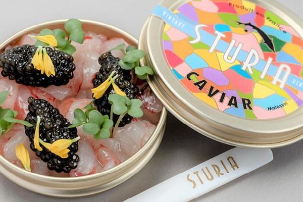 Top 5 Tips how to eat Caviar like a King!